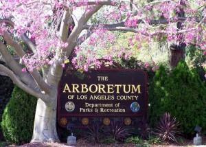 Arboretum-in-Spring