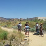 Pacoima Wash Nature Park